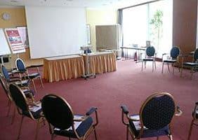 hotel-hplus-seminarraum-goslar-psychosomatische-grundversorgung-seminar-kurs-seminarorganisation-fuchs