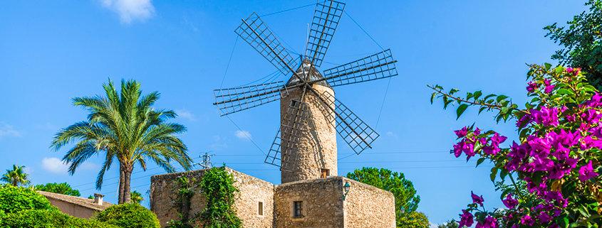 Psychosomatik Kurs Mallorca - Seminar - Kurs - Seminarorganisation - Fuchs - Windmühle